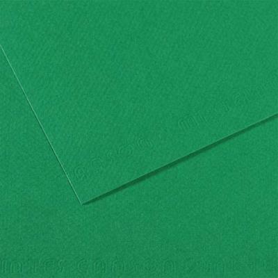 Feuille dessin couleur 50 x 65 cm dessin Tiziano 160g grain moyen teinte dans la masse / Vert Pré Ecole (photo)