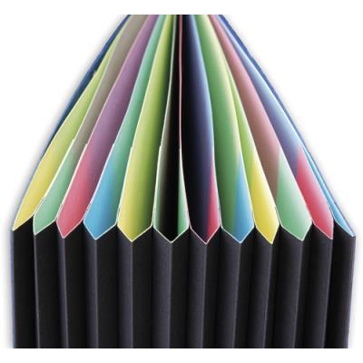 Trieur Extendos 237 Mon Dossier - 12 compartiments - carte forte vernie - vert