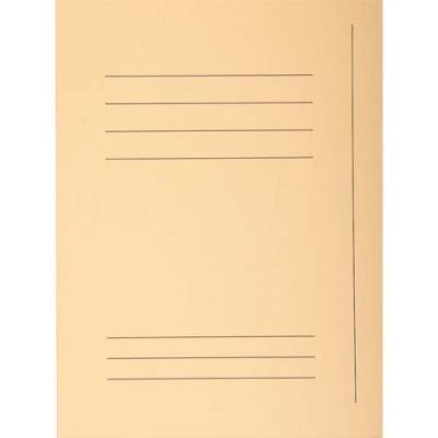 Chemise 3 rabats avec cadre d'indexage Exacompta Super 250 - carte 210 g - bulle - paquet de 50 (photo)