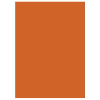 Chemises dossiers 220g recyclées - 24 x 32 cm - orange - lot de 100