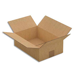Caisse carton - simple cannelure - 31 x 10 x 21,5 cm - lot de 25 (photo)