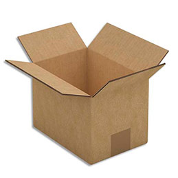 Caisse carton brune - double cannelure - 20 x 14 x 14 cm - lot de 15 (photo)