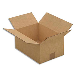 Caisse carton brune - simple cannelure - 31 x 15 x 22 cm - lot de 25 (photo)