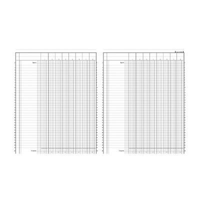 Registre comptable Le Dauphin piqûre 80 pages - format 24,5 x 31,5 cm à la francaise - 8 colonnes