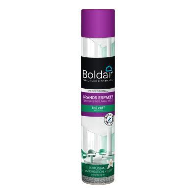 Désodorisant surpuissant en aérosol Boldair Grands Espaces - parfum thé vert - 750 ml (photo)
