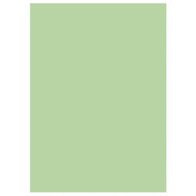Sous-chemises 60g recyclées - 22 x 31 cm - vert - lot de 250