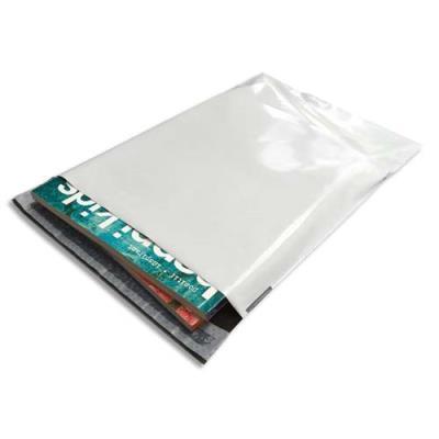 Pochettes indéchirables Bong - en polyéthylène - 60 microns - 24 x 32,5 cm - blanches - boîte de 100 (photo)