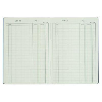 Piqûre Recettes-Dépenses - H.29,7xL.21 cm - 80 pages