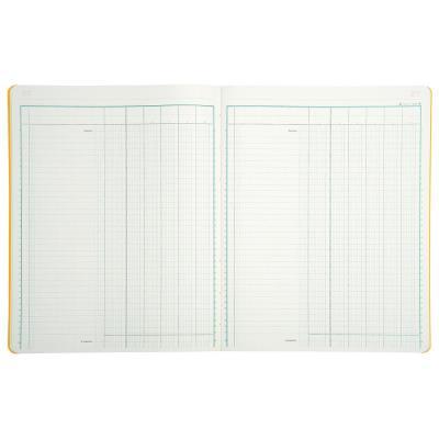 Registre comptable Le Dauphin piqûre 80 pages - format 24,5 x 31,5 cm à la francaise - 6 colonnes