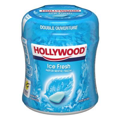 Easy Box Chewing-gum menthe Polaire sans sucre - boîte de 60 dragées - paquet 87 grammes