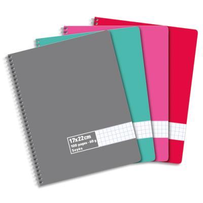 Cahier éco - spirales - couvertures carte - 100 pages - 17x22 cm - grands carreaux - assortis