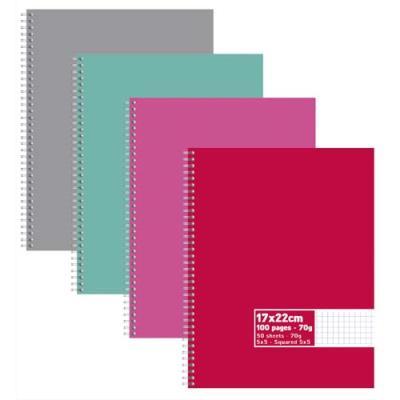 Cahier éco - spirales - couvertures carte - 100 pages - 17x22 cm - petits carreaux - assortis