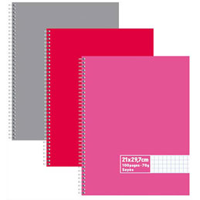 Cahier éco - spirales - couvertures carte - 100 pages - 21x29,7 cm - grands carreaux - assortis