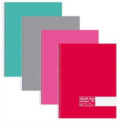 Cahier éco - spirales - couvertures carte - 100 pages - 21x29,7 cm - petits carreaux - assortis