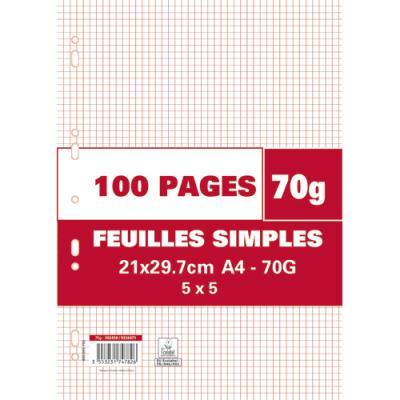 Feuillets mobiles perforés - 70g - 5x5 - 21 x 29,7 cm - papier blanc - étui de 100 pages
