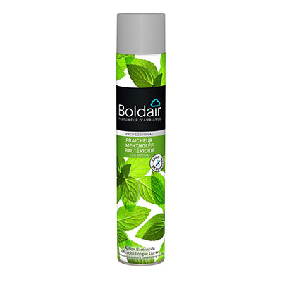 Bombe désodorisante Boldair - parfum fraîcheur mentholée - 500 ml (photo)