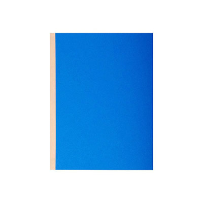 Chemise à soufflet Exacompta Forever - dos toilé - carte 320g recyclée - 24 x 32 cm - coloris assortis - paquet de 10