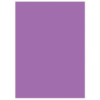 Chemises dossiers 220g recyclées - 24 x 32 cm - violet - lot de 100