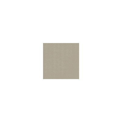 Serviettes de table jetables Dunisoft - 40 x 40 cm - grège - paquet 60 unités