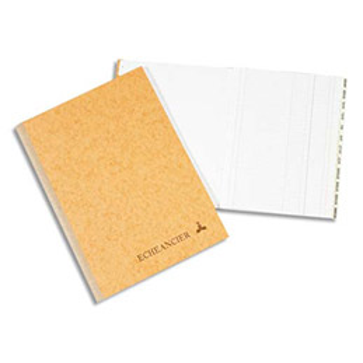 Piqûre journal folioté Le Dauphin - 21 x 29,7 cm - 100 pages