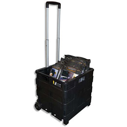 Casier Trolley en plastique - charge maxi 35 Kg (photo)