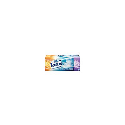 Mouchoirs en papier Classic - quadruple épaisseur - 9 mouchoirs - 200 mm - blanc - boîte 15 paquets (photo)