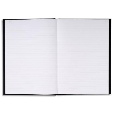 Registre corrige Le Dauphin - 21 x 29.7 cm - 200 pages - travers 2 mm (photo)