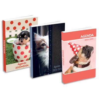 Agenda 2019 journalier - septembre à septembre - 12 x 17 cm - couvertures souples animaux assorties (photo)