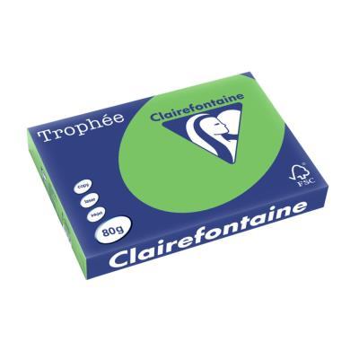 Papier Trophée - vert menthe - teinte intense - 80 g - A3 - ramette de 500 feuilles