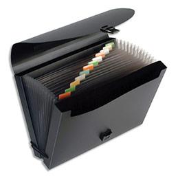 Trieur valise 12cmpts Viquel FanCase - PP 8/10 opaque - avec 2 compartiments - noir
