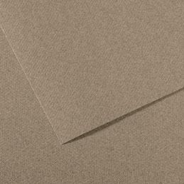Papier dessin Canson Mi Teinte - 160 g - 50 x 60 - gris clair - manipack de 25 feuilles (photo)