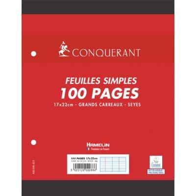 Feuillets mobiles Séyès  - 17x22cm - 90g - blanc éco - lot de 10 paquet 50 feuillets (100 pages) NF88 Ecole