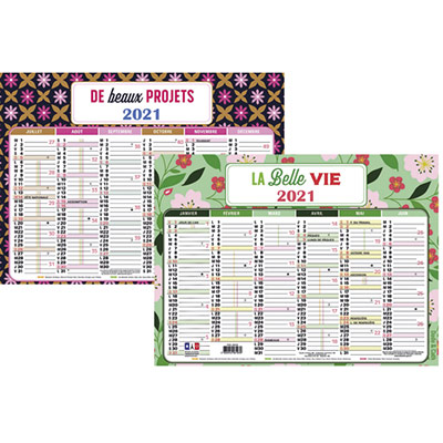 Calendrier semestriel Exacompta - dodo and cath - 6 mois par face - 17,5 x 23,5 cm (photo)