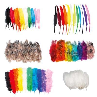 Eco plumes Sodertex - faisan et dinde et indien et oies - tailles et coloris assortis - pack de 1000 (photo)