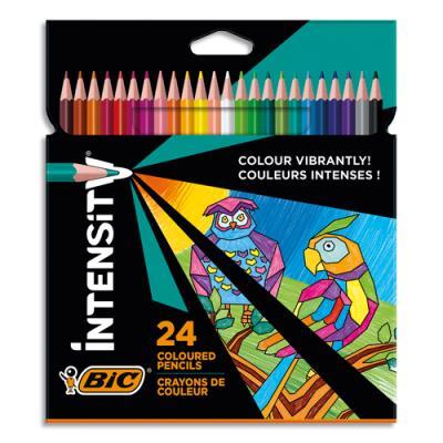 Feutre de coloriage Bic Intensity Up - coloris assortis - pochette de 24 (photo)