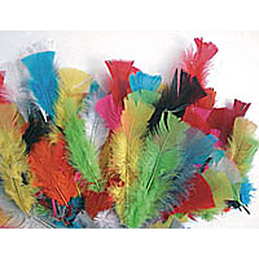 Sachet de 150 plumes 25g couleurs assorties (photo)