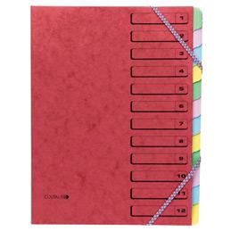 Trieur 12 compartiments fermeture par élastiques Coutal - carte lustrée 5/10ème (photo)