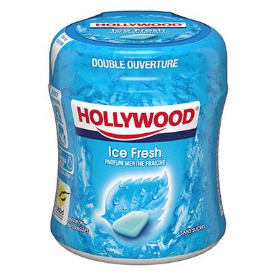 Easy Box Chewing-gum menthe Polaire sans sucre - boîte de 60 dragées - paquet 87 grammes (photo)