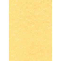 Boîte de 100 feuilles parchemin Decadry -  A4 -  95 g - parchemin or (photo)