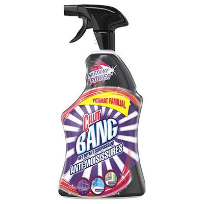 Nettoyant surpuissant anti-moisissures - spray 1 L (photo)