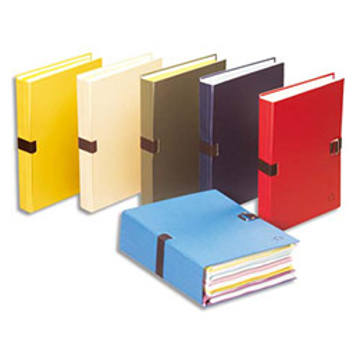 Chemise 1er prix extensible recouverte de papier toilé - coloris assortis (photo)