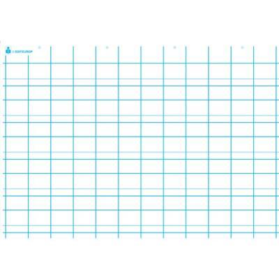 Carte première écriture, double ligne. En polypro 5/10è effaçable à sec format 70x100cm (photo)