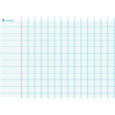 Carte grand Seyès. En polypro 5/10è effaçable à sec format 70x100cm (photo)