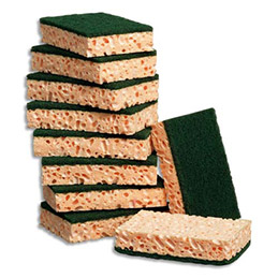 Lot de 10 éponges rectangulaires vertes - Jex (photo)