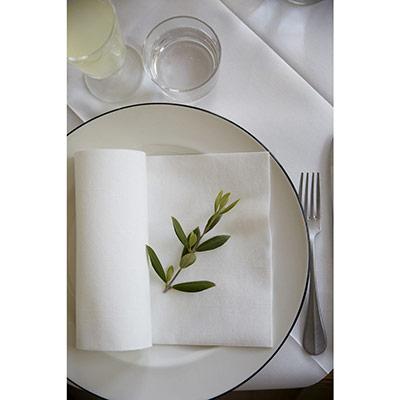 Serviettes de table jetables Dunilin - 40 x 40 cm - blanc - paquet 45 unités (photo)