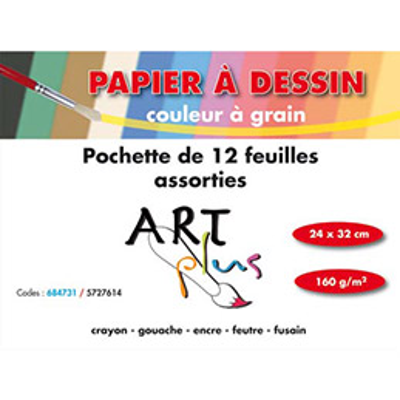 Pochette de 12 feuilles à dessin - couleurs assorties - 24 x 32 cm - 160g (photo)