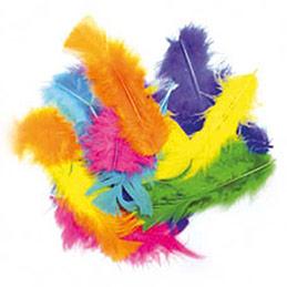 Sachet de 25 grammes de plumes couleurs assorties (photo)