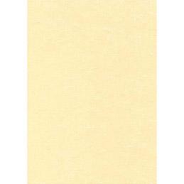 Boîte de 50 feuilles Decadry - A4 - 165g - parchemin champagne