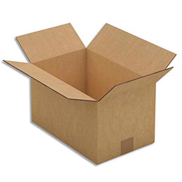 Caisse carton brune - double cannelure - 50 x 31 x 31 cm - lot de 15 (photo)