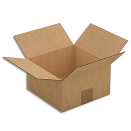 Caisse carton brune - simple cannelure - 20 x 11 x 20 cm - lot de 25 (photo)